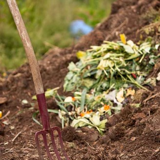 Composting: How-To Basics